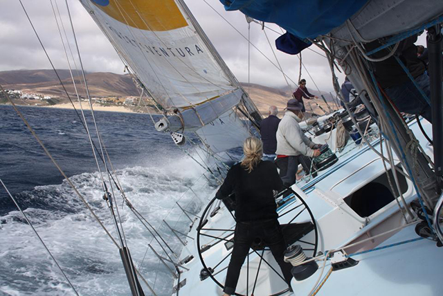 Fisher & Paykel charter ceñida